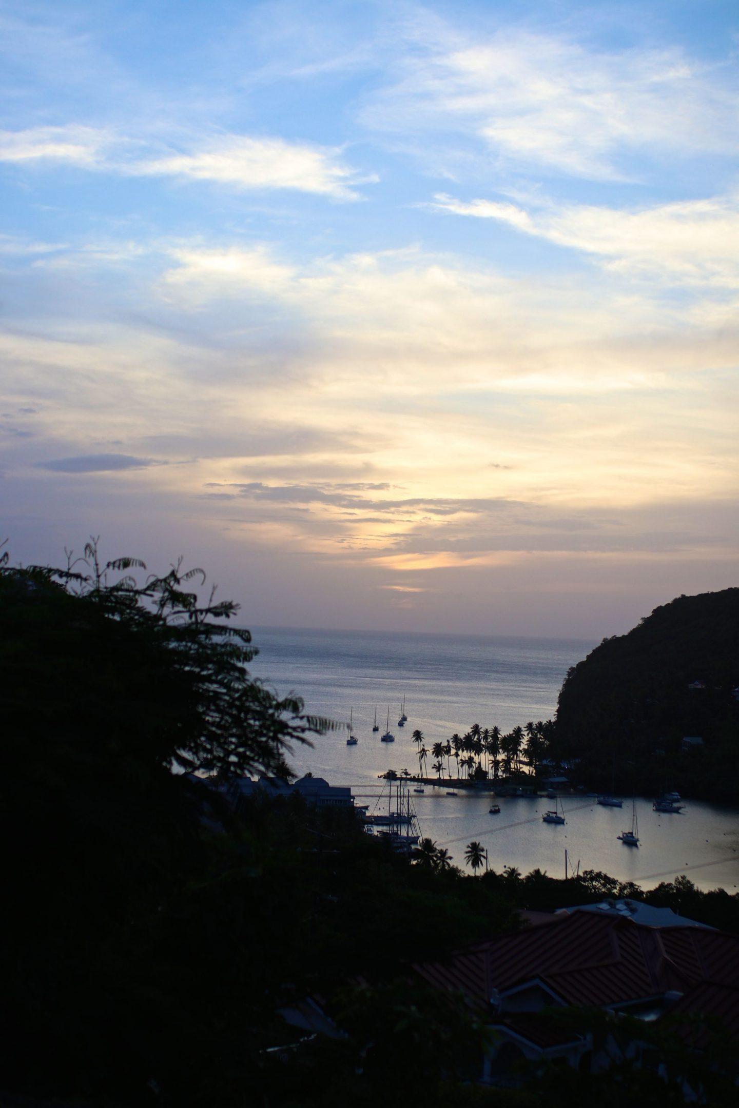 Katie KALANCHOE, St Lucia, Marigot Bay