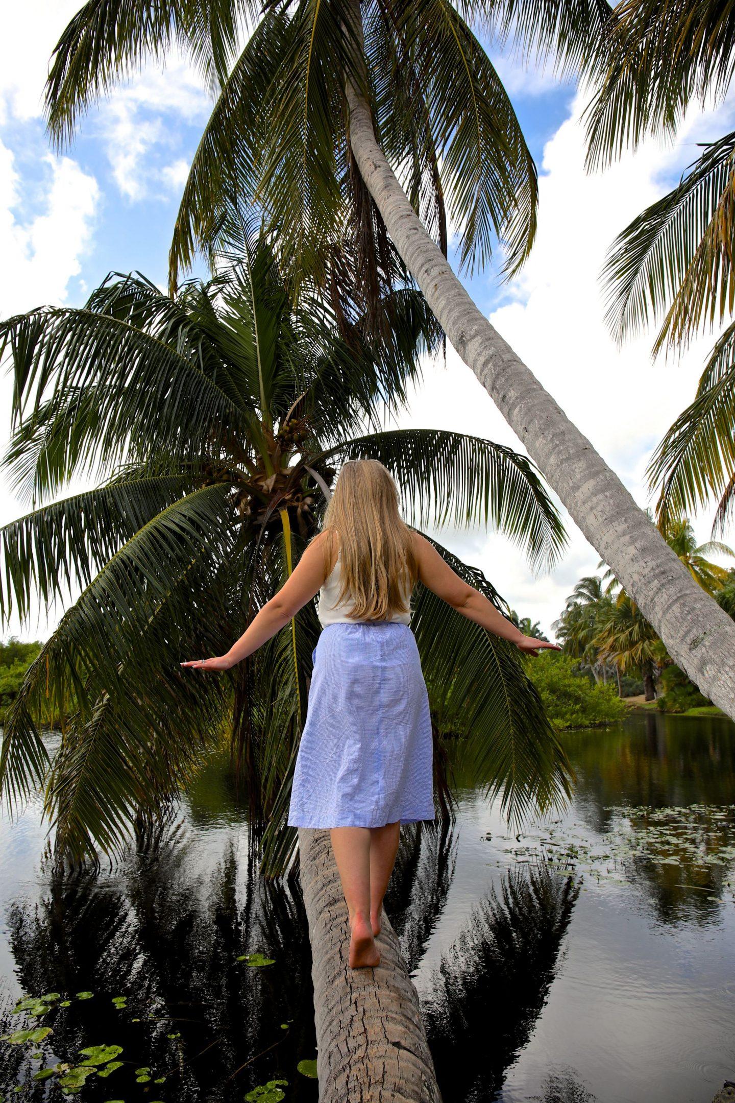 Queen Elizabeth II Botanical Gardens, Grand Cayman, Katie Heath, KALANCHOE