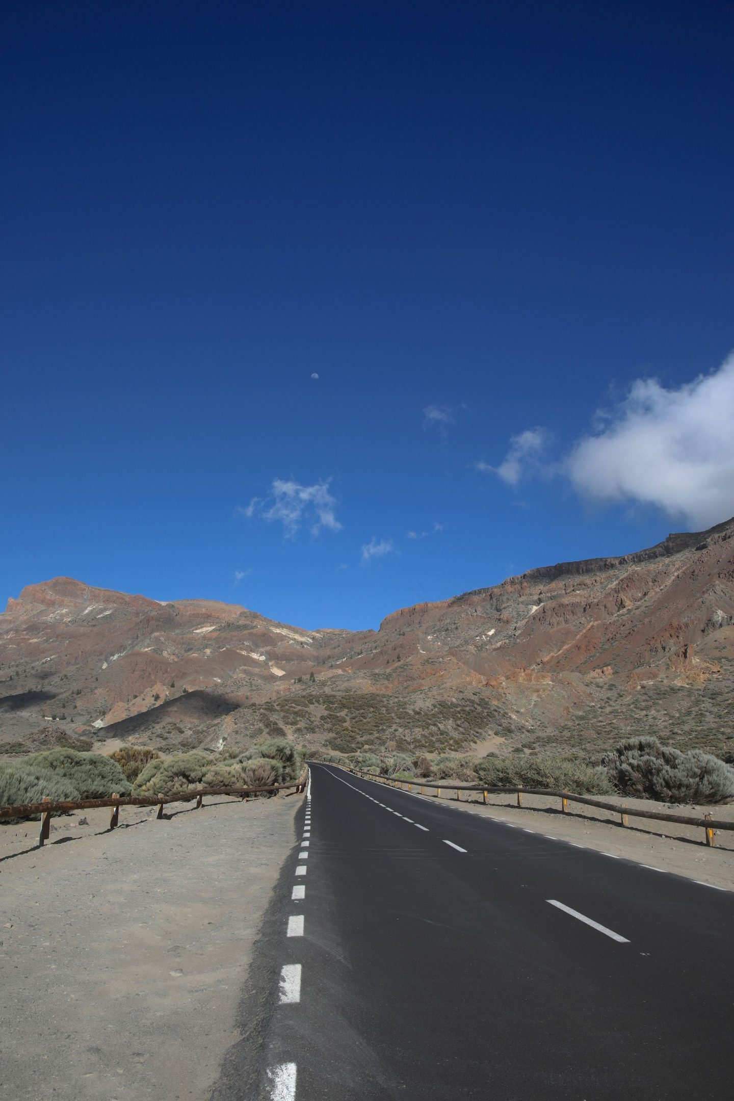 El Teide National Park, Tenerife, Canary Islands, Katie Heath, KALANCHOE