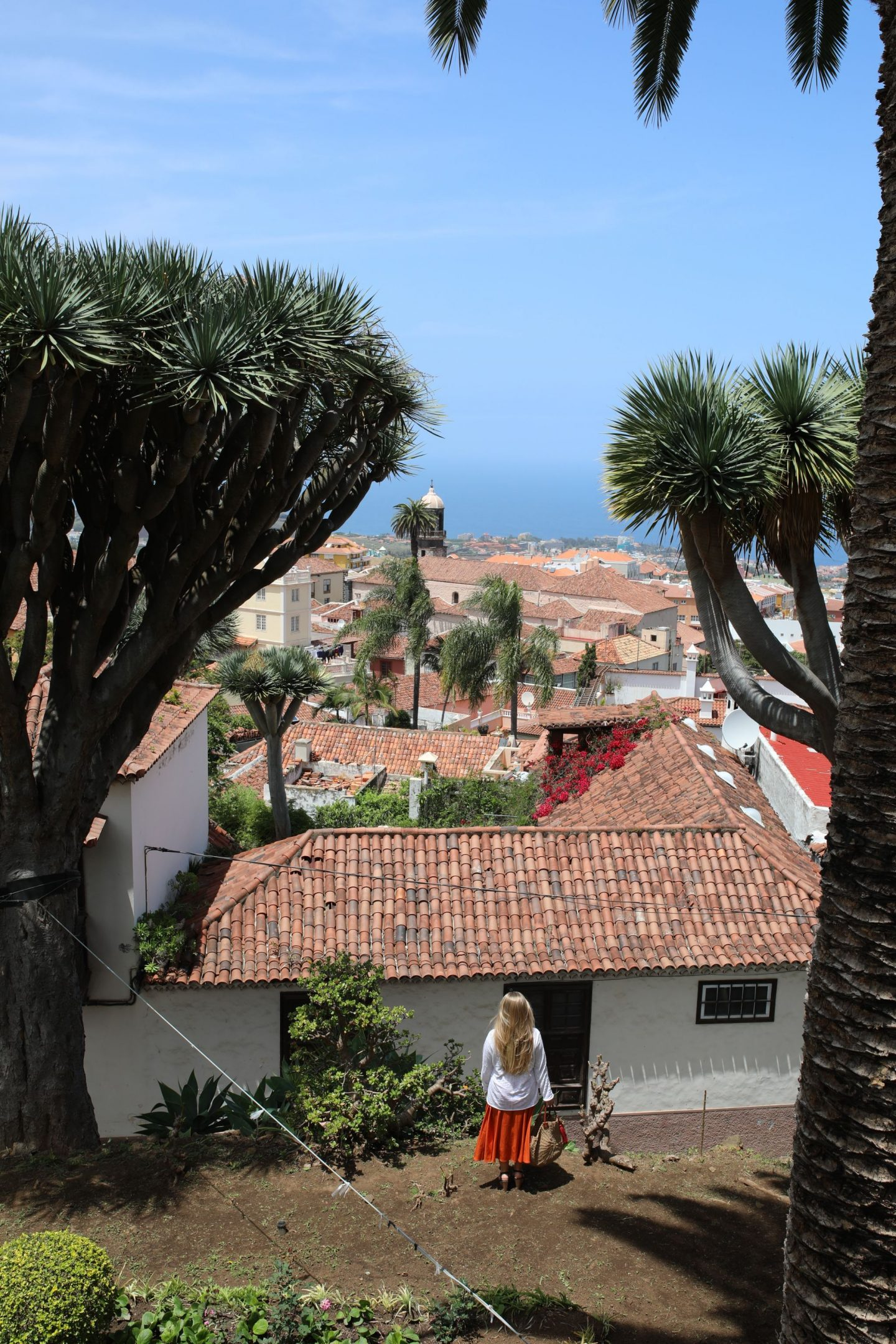 La Orotava, Tenerife, Canary Islands, Katie Heath, KALANCHOE
