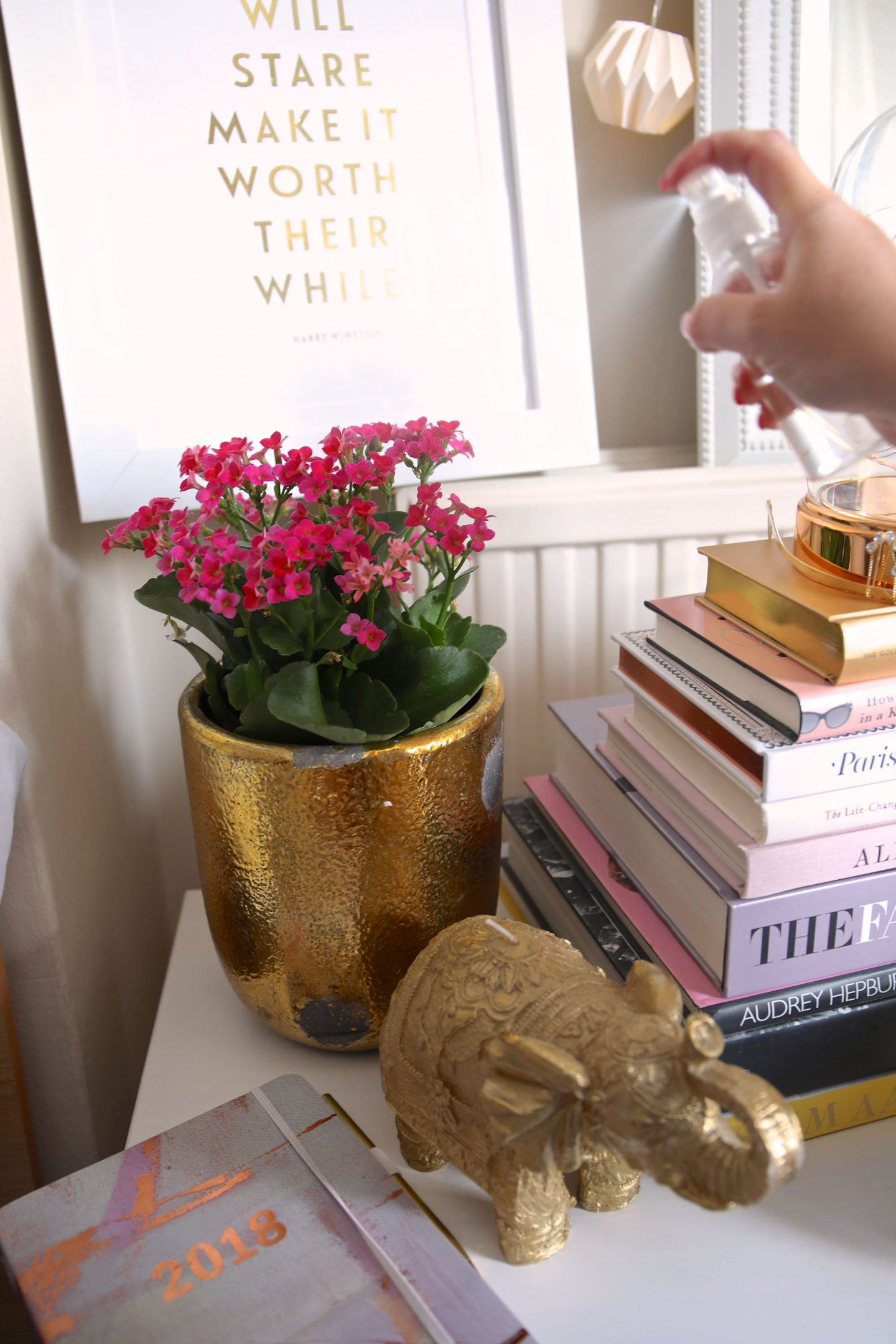 Katie Heath, KALANCHOE Plants, Home, Beautiful Spaces, Desk,