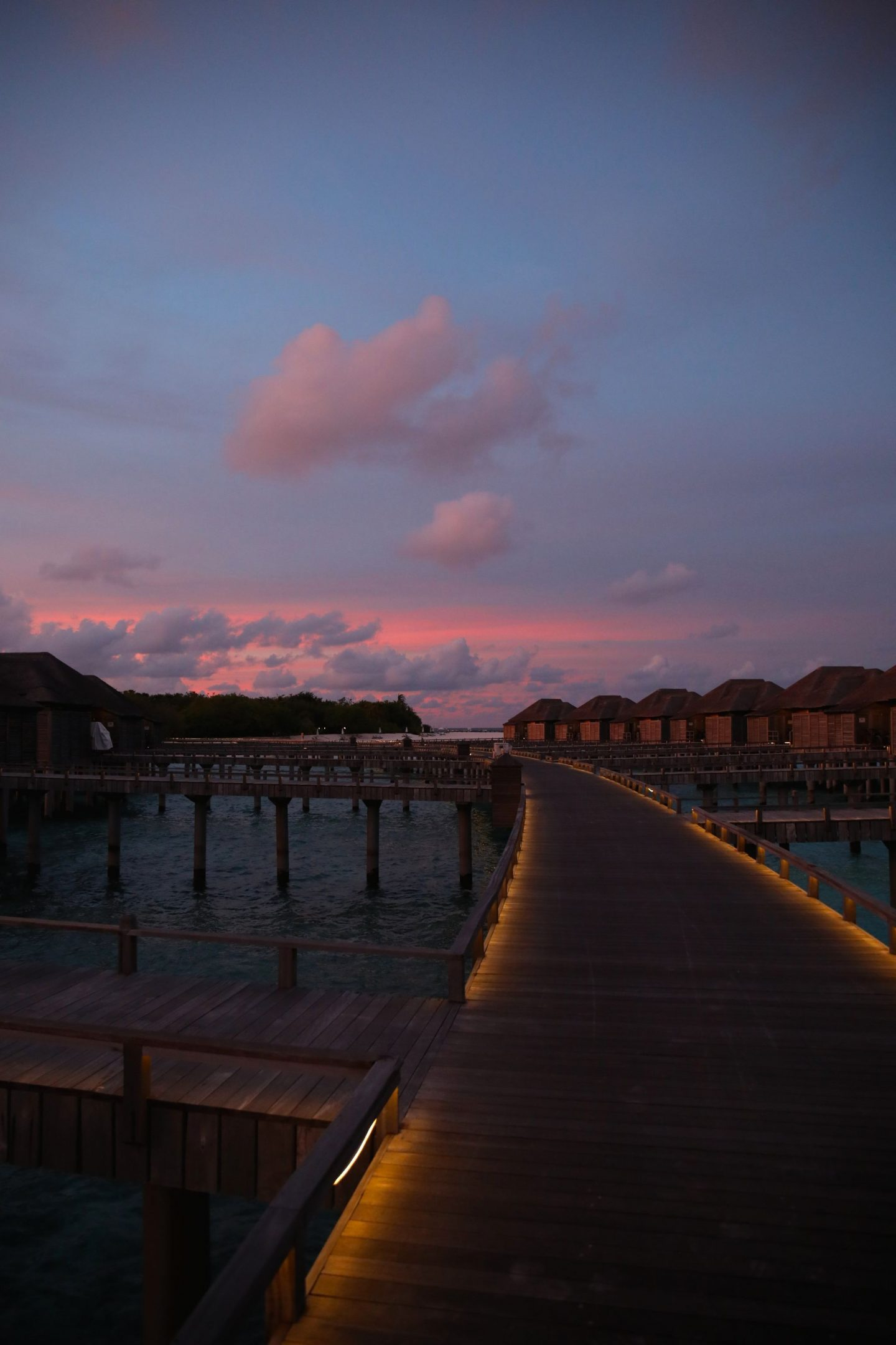 Ja Manafaru in The Maldives Over The Water Bungalow, Katie Heath, Kalanchoe