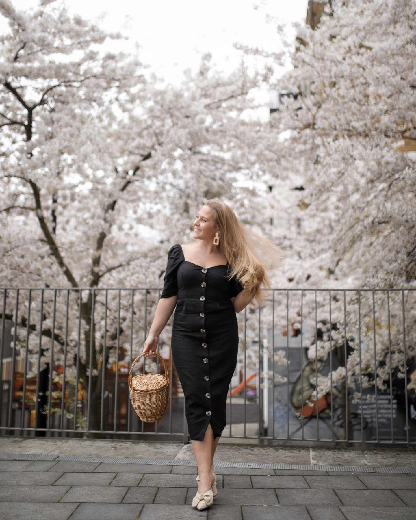 Katie Heath, KALANCHOE Black Cherry Blossom in spring
