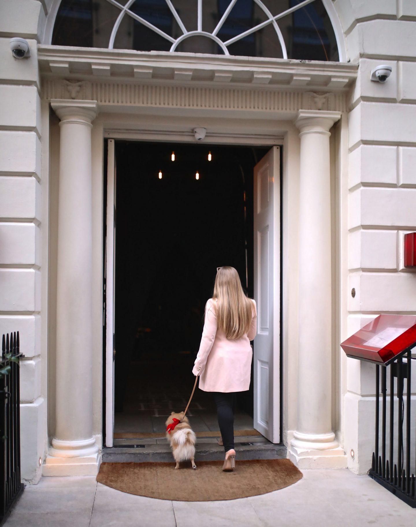 Katie heath, Kalanchoe, Breakfast at Sketch in London