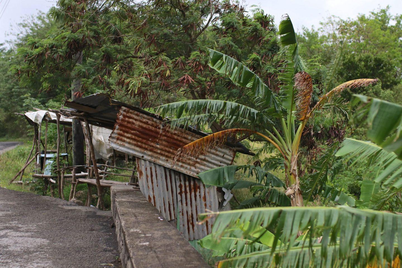 Katie Heath, KALANCHOE, St Lucia, Soufriere