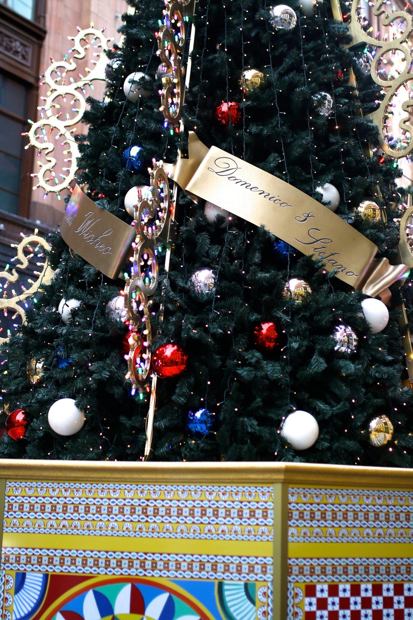 Dolce & Gabbana Christmas Takeover, Katie KALANCHOE