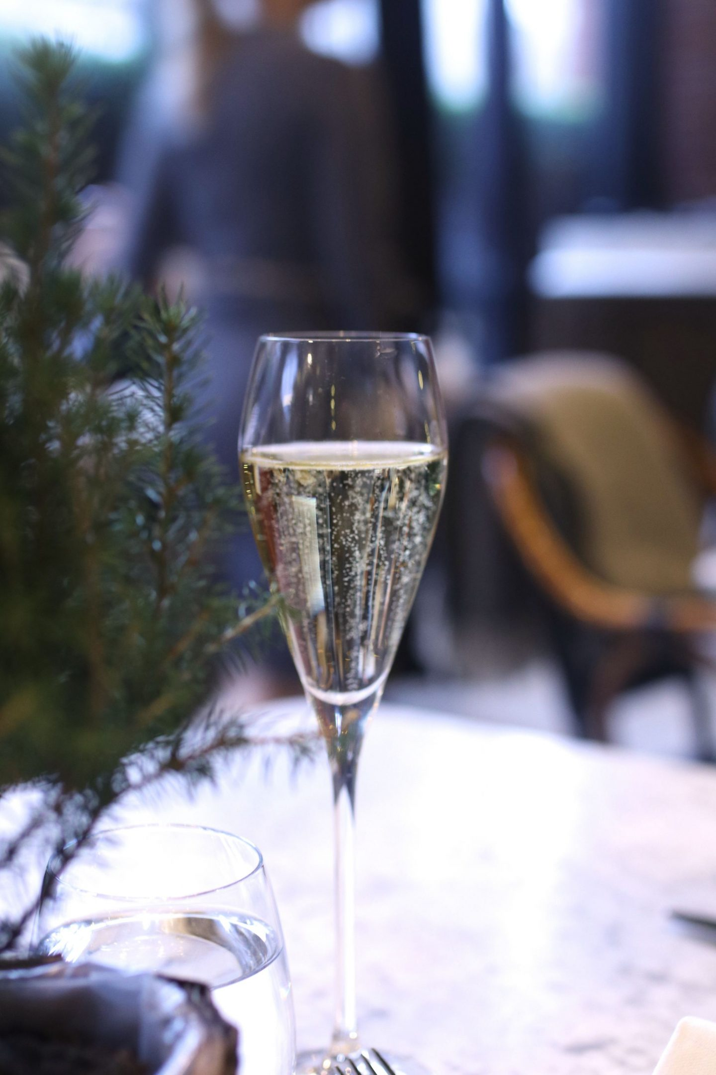 The Coral Room and Dalloway Terrace at The Bloomsbury Hotel London