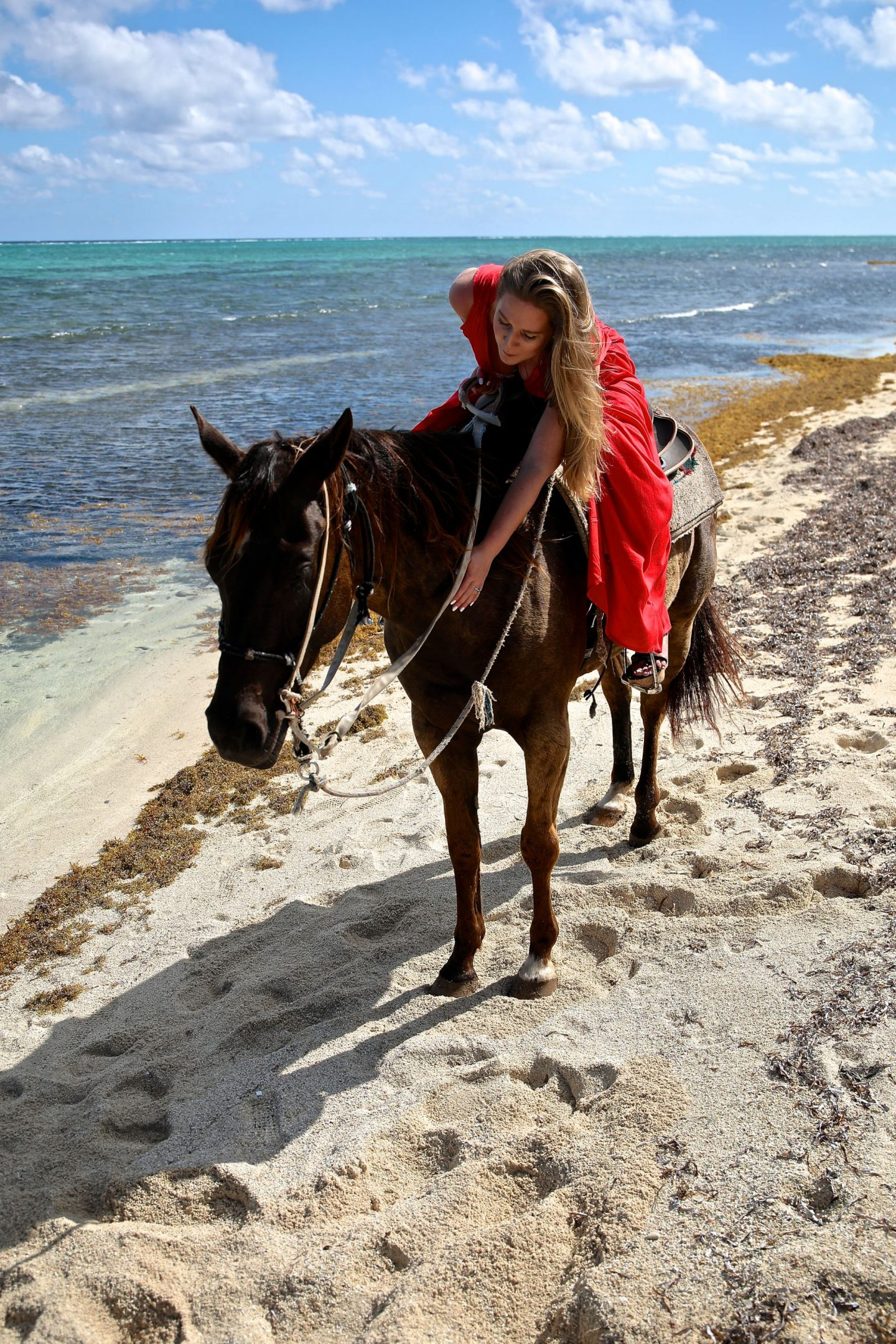 Horse Riding on the beach, Grand Cayman, Katie Heath, KALANCHOE