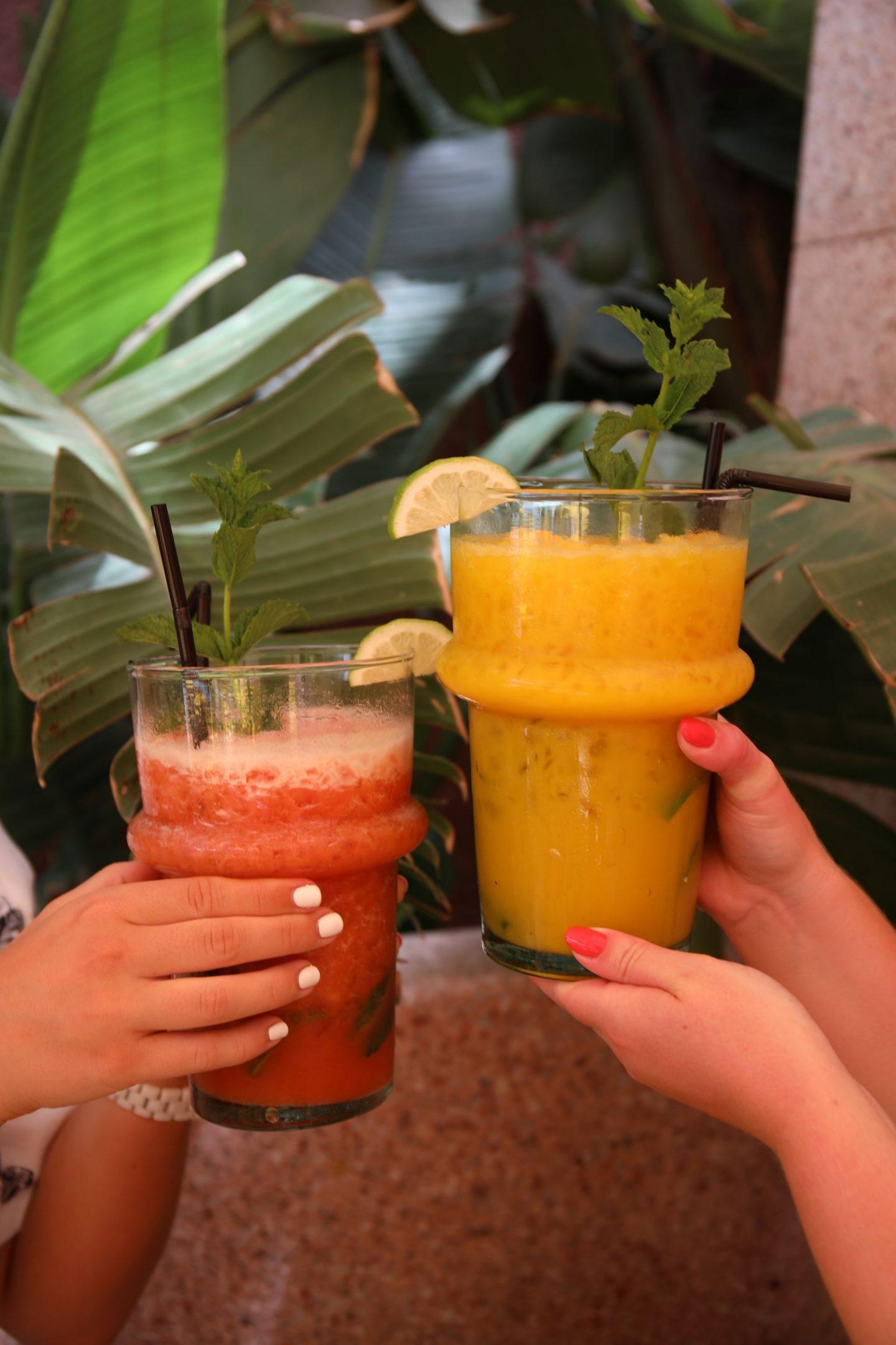 Katie KALANCHOE, Marrakech, Jardin Majorelle, YSL Cafe