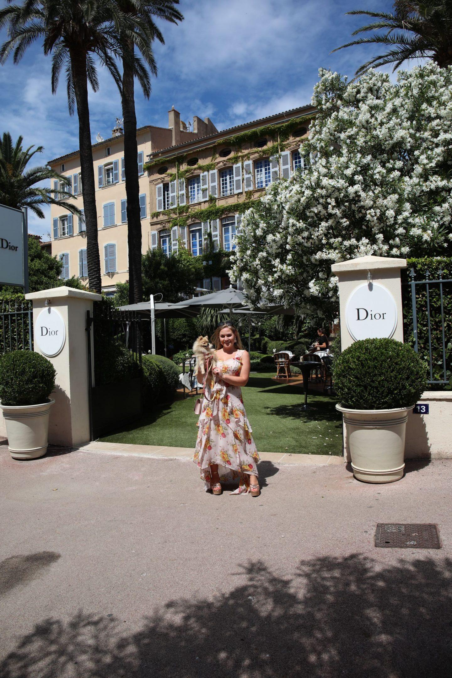 St Tropez Town, France, Katie KALANCHOEm,