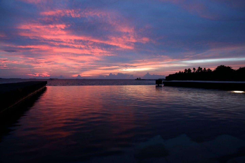 Ja Manafaru in The Maldives Over The Water Bungalow, Katie Heath, Kalanchoe
