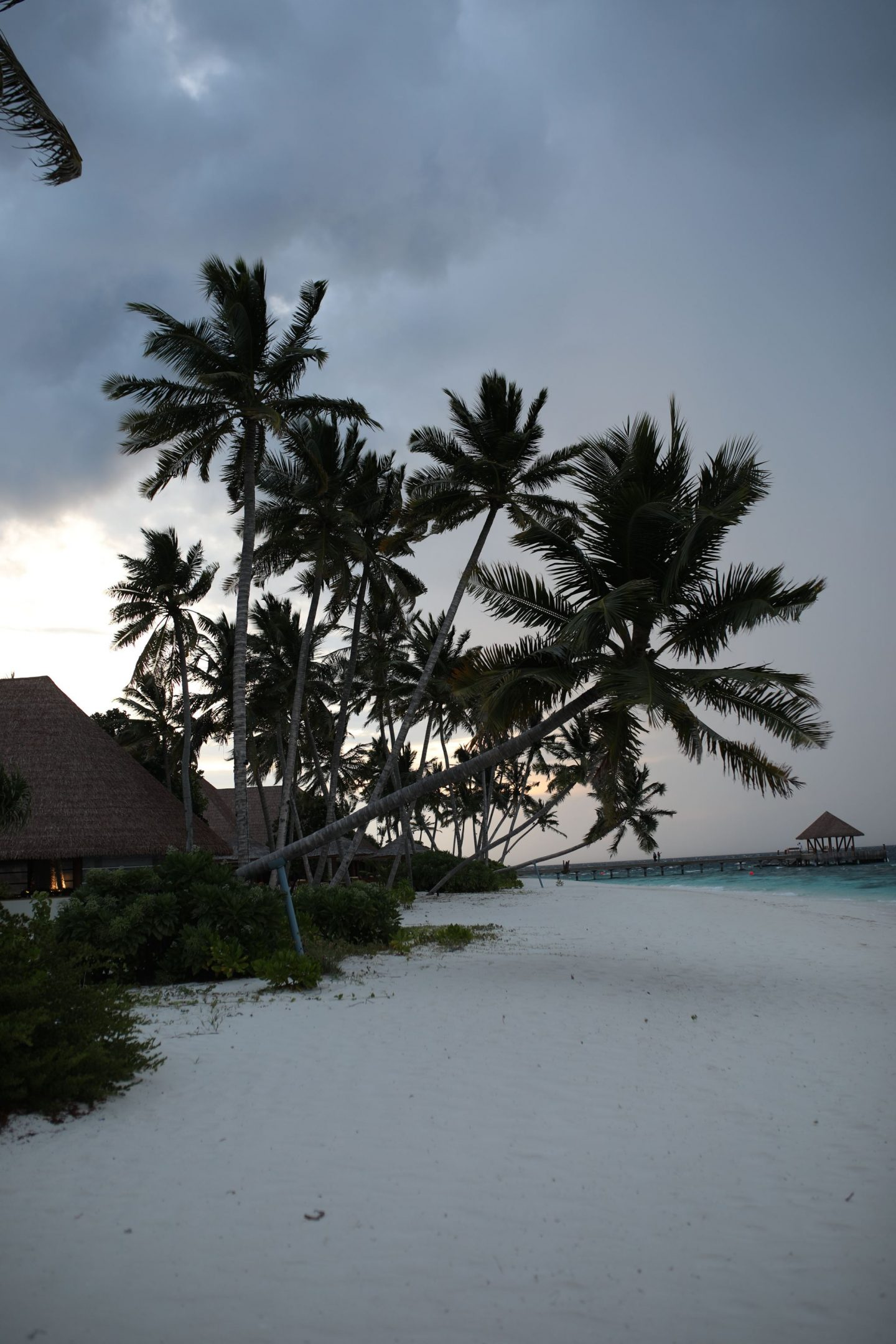 The Beach, Reethi Faru Resort, Raa Atoll, The Maldives, Katie KALANCHOE, Katie Heath