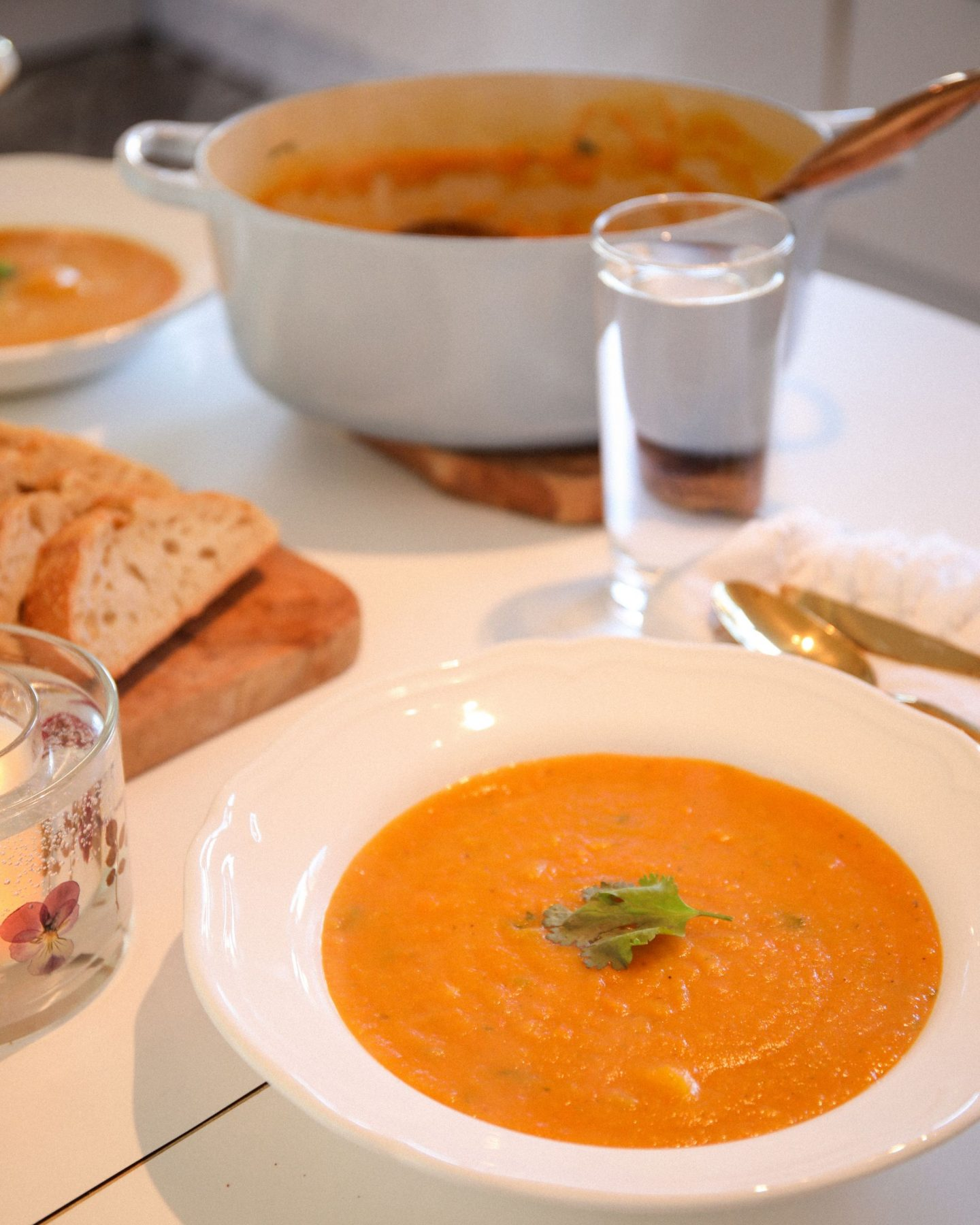 Katie Heath, Vegan Carrot and Coriander Soup, Kalanchoe
