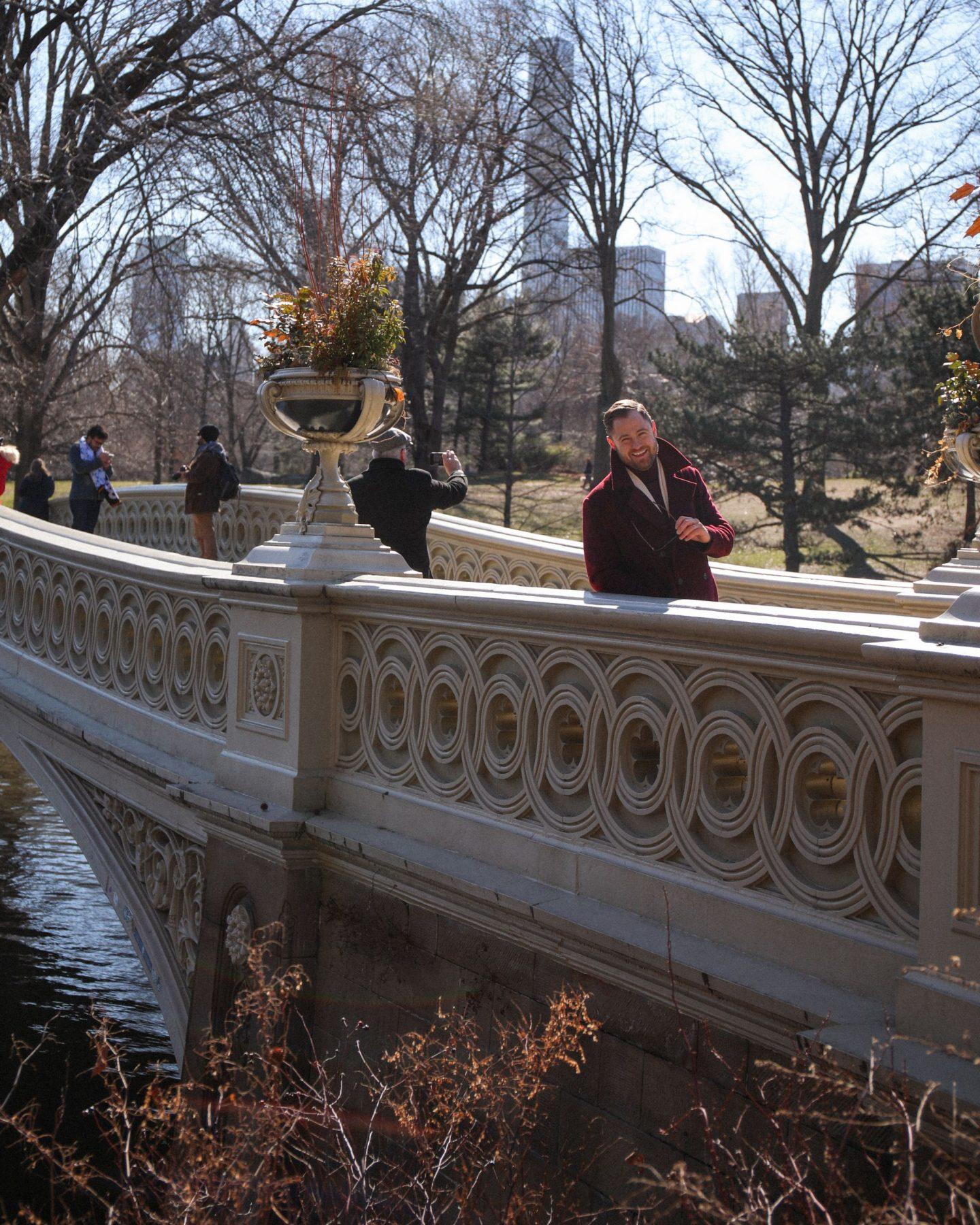 Central Park, New York, Katie Heath, KALANCHOE