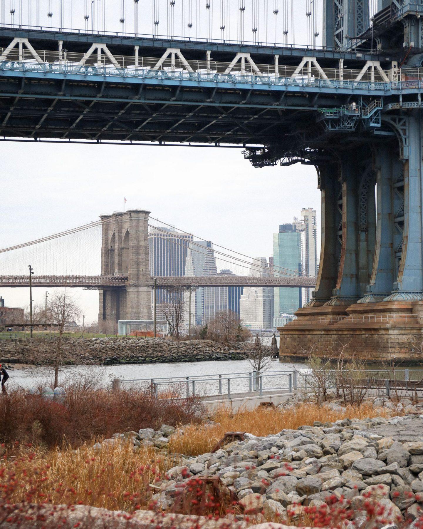 DUMBO, Brooklyn, New York City, Ben and Katie Heath, KALANCHOE