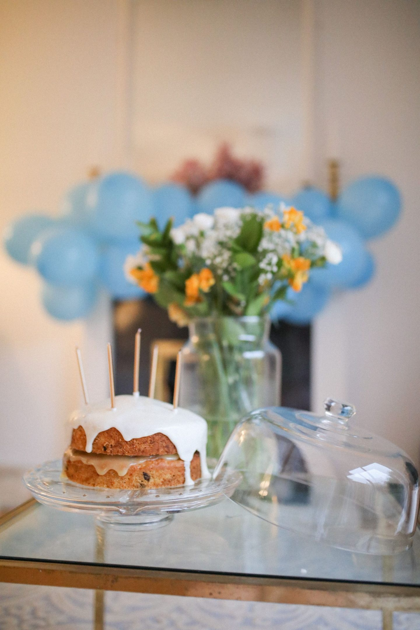 Carrot Cake Birthday Katie, Katie KALANCHOE