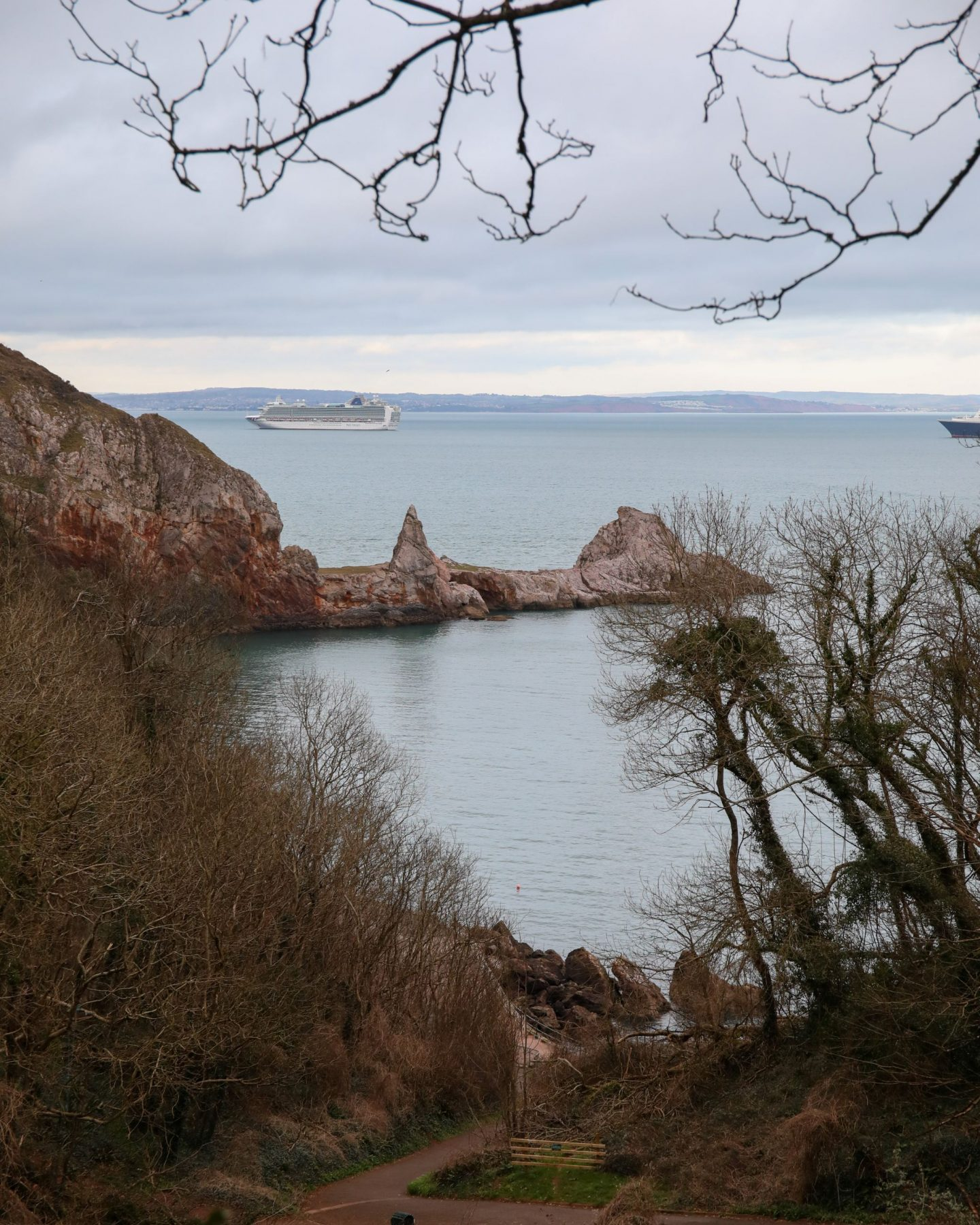 Ansteys Cove, Torquay, Devon, Katie Heath, KALANCHOE